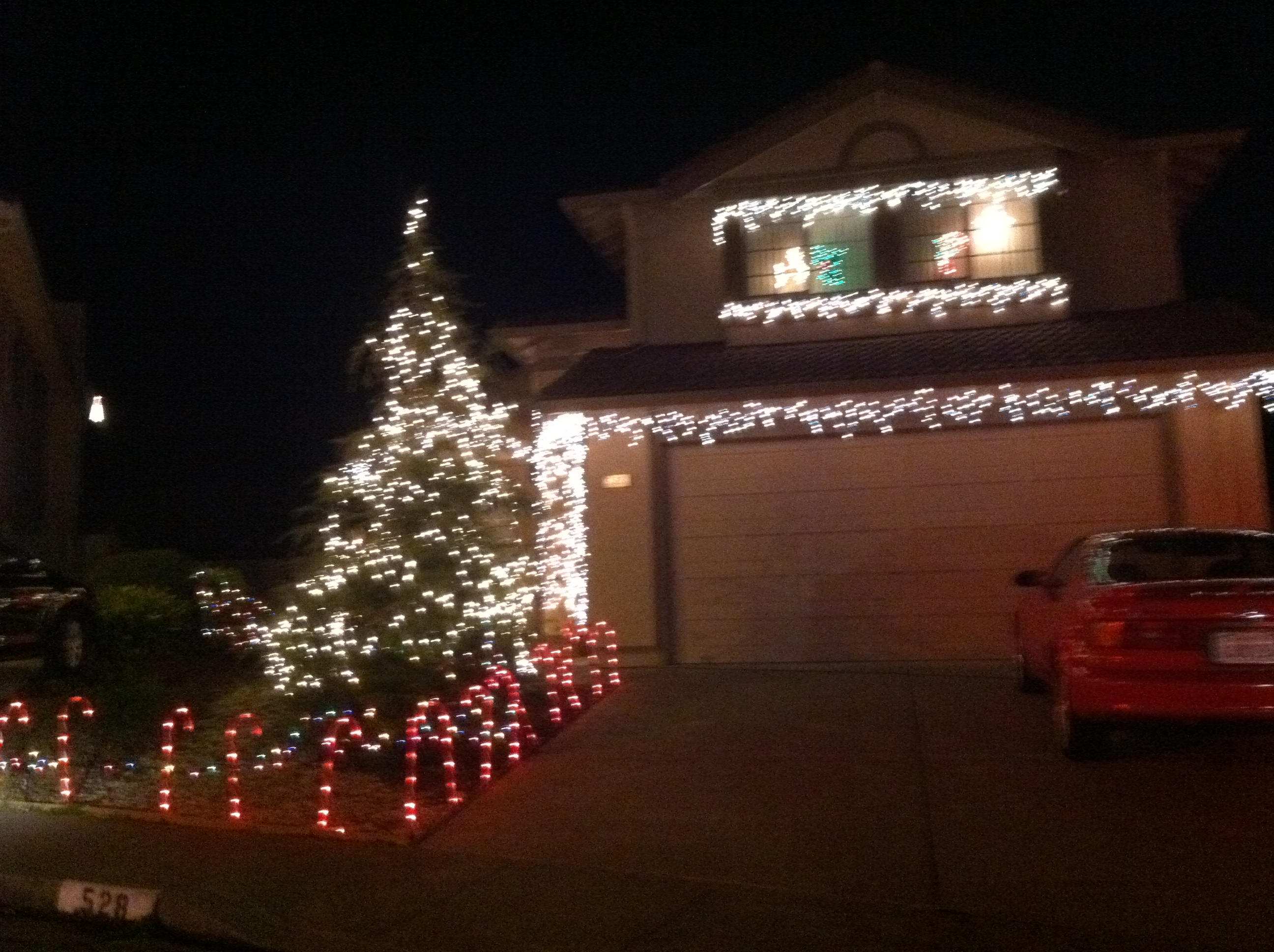 candy cane fence - Driveway Christmas Lights